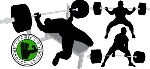 Campionati Assoluti Italiani di Powerlifting 2014_vigor_turi_putrino_vercelli.jpg