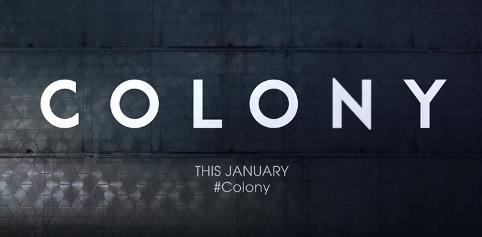 Colony .jpg