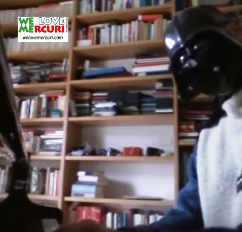 Darth Vader in maglione di pelo di Wookie_welovemercuri.jpg