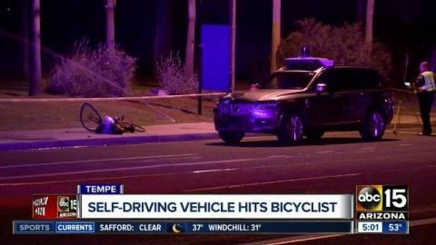 Elaine Herzberg_welovemercuri_Arizona_Uber.jpg