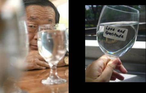 Esperimento del Riso di Masaru Emoto.jpg