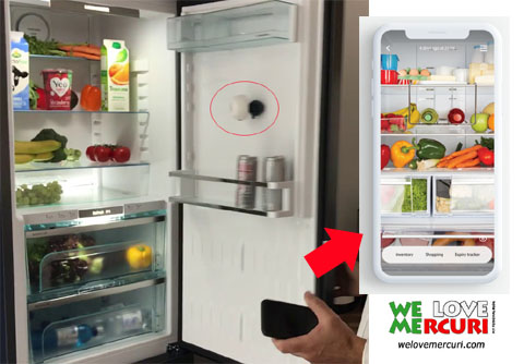 FridgeCam_welovemercuri.jpg