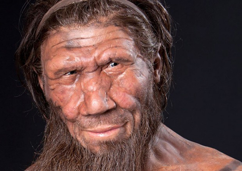 Neanderthal_Romani.jpg