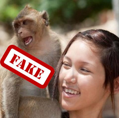 Ragazza 18 enne incinta partorisce una scimmia.jpg