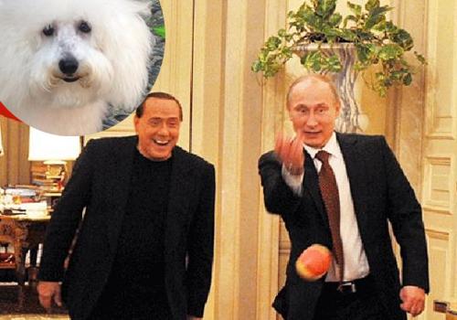 Silvio_Putin_Dudù.jpg