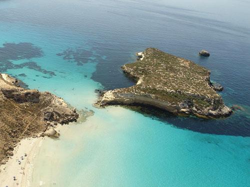 Spiaggia Isola dei Conigli di Lampedusa.jpg