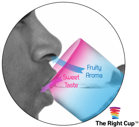 The Right Cup (il bicchiere ingannevole).png