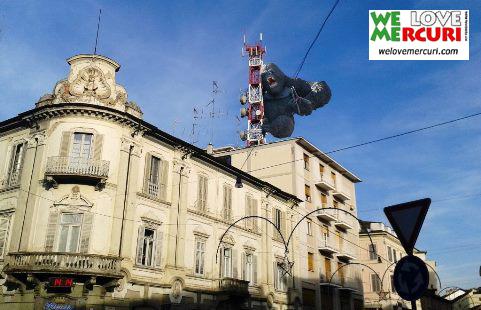 Vogliamo un King Kong Bicciolano_welovemercuri_vercelli.jpg