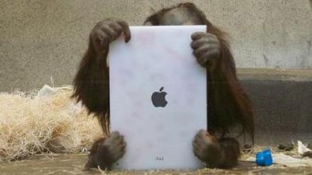 apple_.jpg