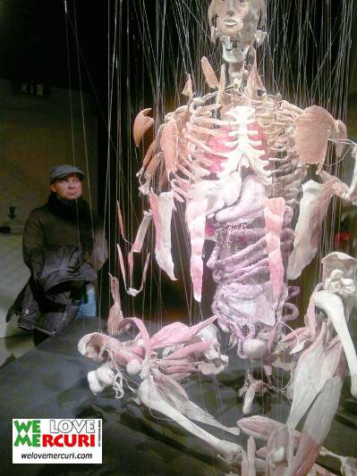 bodyworld_milano_welovemercuri.jpg
