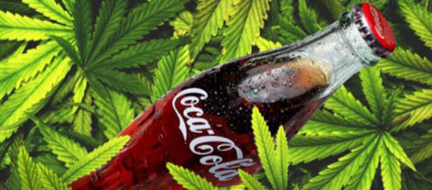 coca-cola-cannabis-marijuana-cannabidiolo-cmd_2098841.jpg