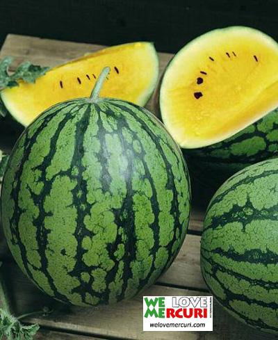 coco-ananas_giappone_welovemercuri.jpg
