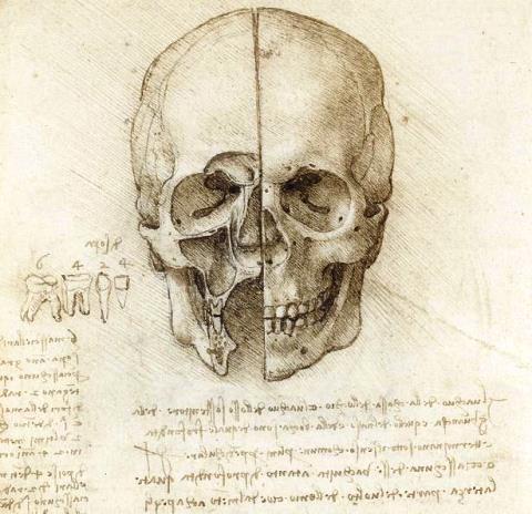 disegni_Leonardo Da Vinci_welovemercuri.jpg