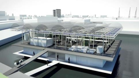 floating farm_Rotterdam_Ansa.jpg