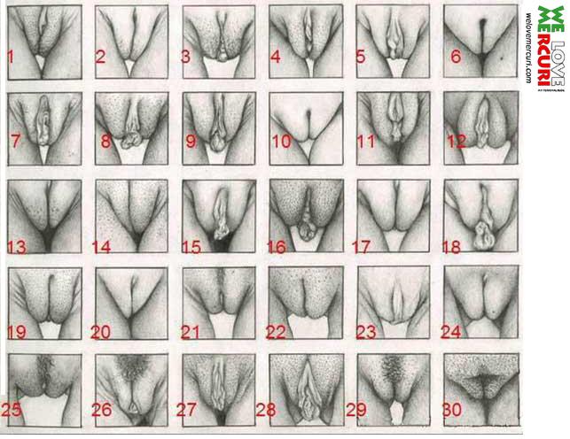 video di massaggi erotici gratis numero di telefono puttane