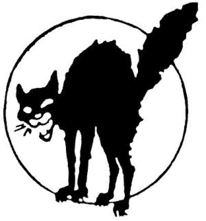 gatto_nero_17-11.jpg