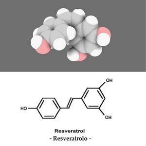 resveratrolo-resveratrol.jpg