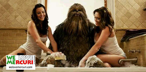 sexy_wash_Chewbacca_welovemercuri.jpg