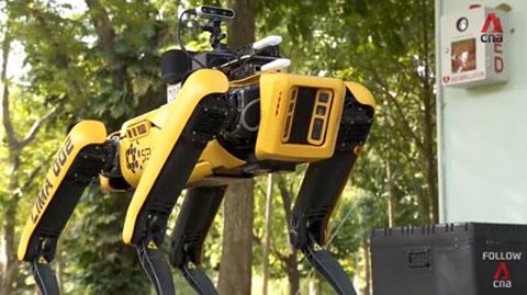 spot_cane_robot_welovemercuri.jpg