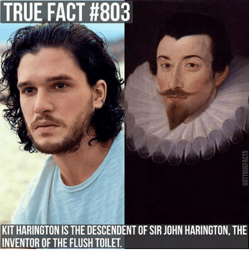 true-fact-803-kit-harington-is-the-descendent-of-sir-24034518.png